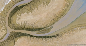 109 COLORADO_RIVER_DELTA_PANO_ORIGINAL