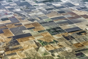 Drought Dessicated Texas Farmland
